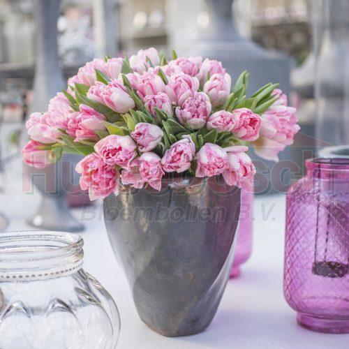 Pink flowers in purple vase